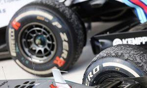 Ecclestone backs drivers' tyre calls