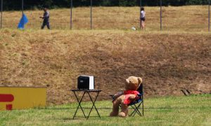 A teddy bear watches television…