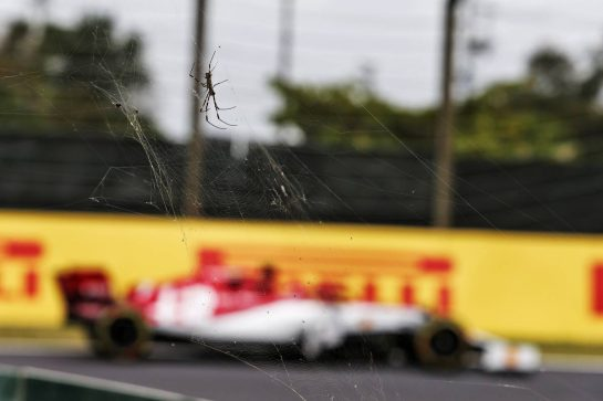 Kimi Raikkonen (FIN) Alfa Romeo Racing C38 passing a spider. 11.10.2019. Formula 1 World Championship, Rd 17, Japanese Grand Prix, Suzuka, Japan, Practice Day. - www.xpbimages.com, EMail: requests@xpbimages.com - copy of publication required for printed pictures. Every used picture is fee-liable. © Copyright: Moy / XPB Images