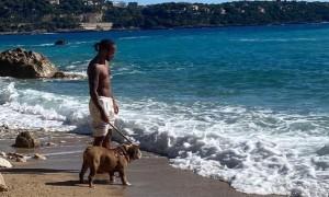 Hamilton and Roscoe's endless summer