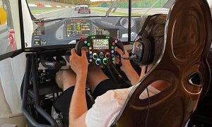 Max suffers another 'hairy' moment behind the wheel